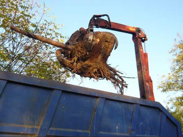 Costo-raccolta-materiali-riciclabili-Pavia
