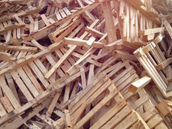 Ritiro-legno-Parma-pavia
